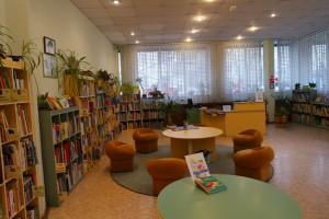 Одна из библиотек в Южном округе