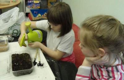 В рамках урока дети смогли посадить различные культуры