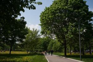 Открытое первенство по спортивному ориентированию пройдет в парке «Садовники»