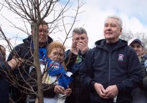 Сергей Собянин: Весной в Москве высадили 221 тысячу деревьев и кустарников