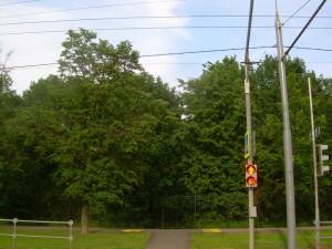 В районе Бирюлево Восточное отремонтировали светофор
