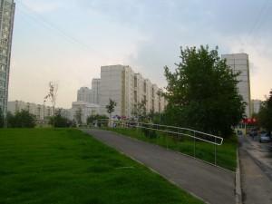 Газон в районе Бирюлево Восточное