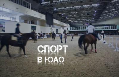 спорт_281016