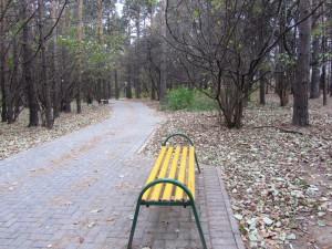 Парк в районе Бирюлево Восточное