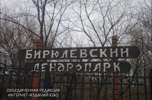 Бирюлевский дендропарк