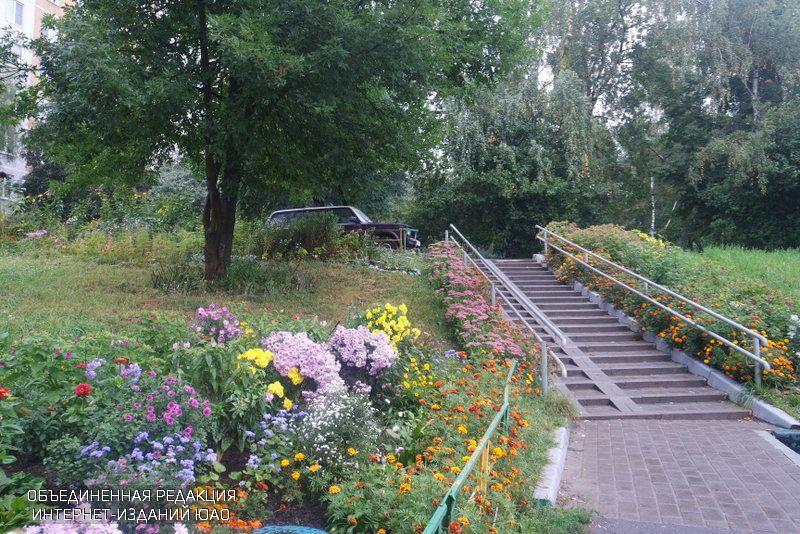 Местные власти района Бирюлево Восточный улучшают дворы