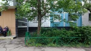 Городские службы увезли упавшее дерево на Михневской улице