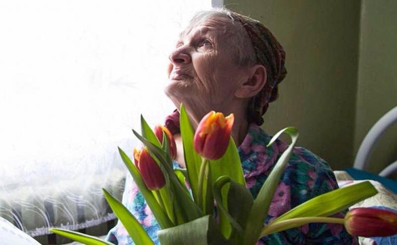 бабушка, подарок, тюльпаны, старость в радость, мосру, 2811