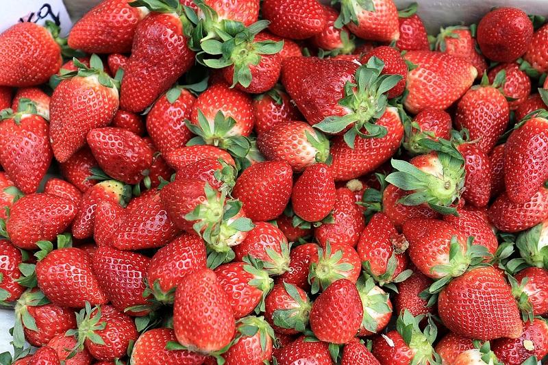 клубника, пиксибей, ягода, 0606