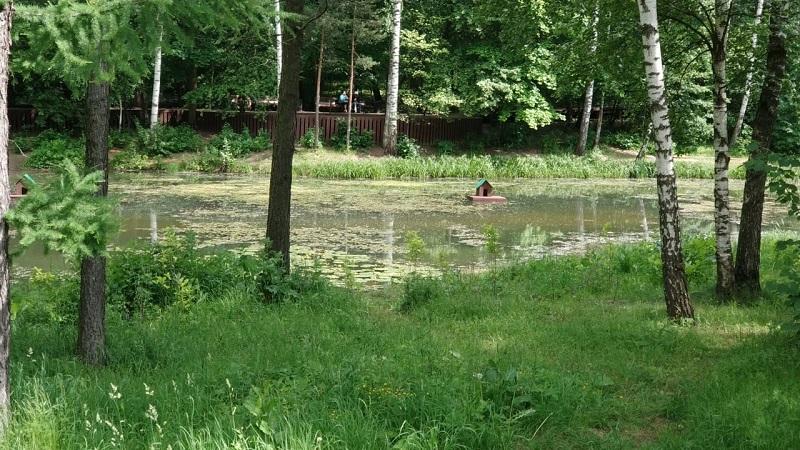Бирюлевский дендропарк, домик для птиц, пруд, Фролова, 0609 (2)