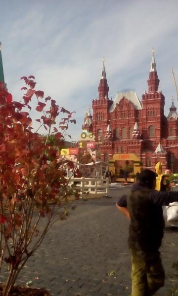 Институт садоводства, Миронова, Золотая осень, Красная площадь, фестиваль, 0810 (2)